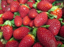 Talk about looking good enough to eat!  Thank goodness for strawberry season!  Taken by Marcia Lane